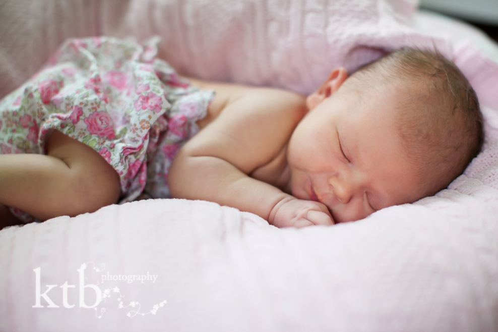 newborn baby portait